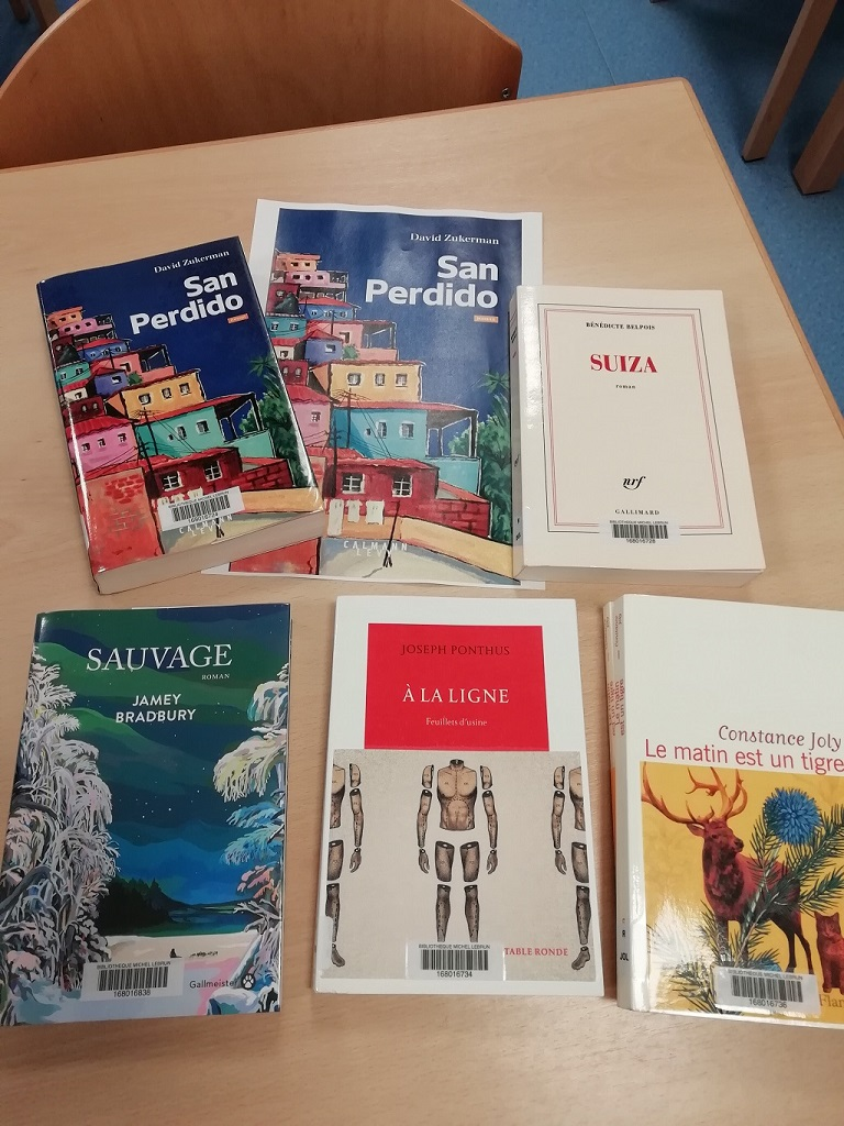 Photo des livres classés par ordre de préférence de gauche à droite